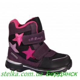 Детские зимние ботинки на девочку, обувь D.D.Step (мембрана) 6347-1