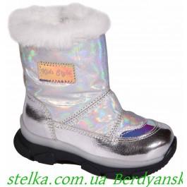 Зимние детские дутики на девочку, ТМ Happy Walk, 6680-1